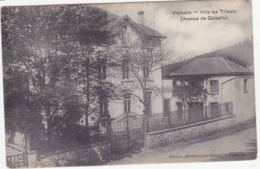 41695 -  Vielsalm  Villa  Les Tilleuls - Vielsalm