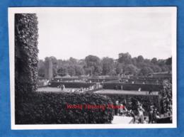 Photo Ancienne Snapshot - WIMBLEDON - Match De Tennis - 22 Juin 1948 - Court à Situer - Tennisman - Sport