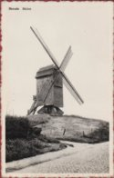 Herzele Molen Windmolen Windmill Moulin A Vent ZELDZAAM 1967 (In Zeer Goede Staat) - Herzele
