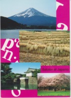 AKEO Card From Japan With Text In Esperanto - Mt. Fuji - Rice Fields - Edo Castle - Cherry Blossoming - Esperanto