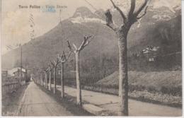 AKEO Card About Viale Dante In Torre Pellice - Italy - Written In Esperanto 1911 - Esperanto