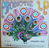 * LP *  PROMOTIE LP DURECO JANUARY 1974 - Various Artists - Compilaties