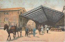 13 - MARSEILLE - Hangars Vitrés Des Docks - Marseille