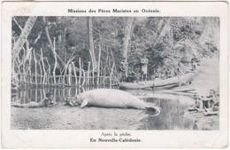 988. En Nouvelle-Calédonie. Après La Pêche. Missions Des Pères Maristes En Océanie - Nouvelle Calédonie