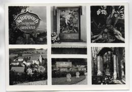 AK 0324  Stuppach - Madonna Von Grünewald Um 1960 - Bad Mergentheim