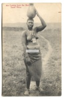 Coming From The Well, South Africa - Woman, Nude - Old Postcard - South Africa