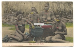 Zulu Girls With Mealies, Nude - Old South Africa Postcard - South Africa