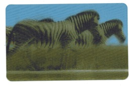 CARTE ANIMEE    CORA   CARTES ANIMAUX   ZEBRE     N° 36 - Other