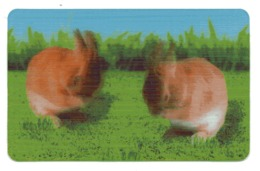 CARTE ANIMEE    CORA   CARTES ANIMAUX    LAPIN    N° 19 - Other