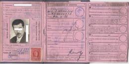 PATENTE DI GUIDA  /  PERMIS DE CONDUIRE  _ Patente Di Guida Con Marche Da Bollo - Documenti Storici