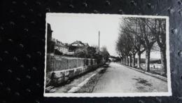 SEYSSEL (Ain) - Les Quais Du Rhône - L'Avenue De La Gare - Seyssel