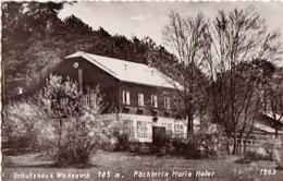NÖ - Pernitz Schutzhaus Waxeneck - Pernitz