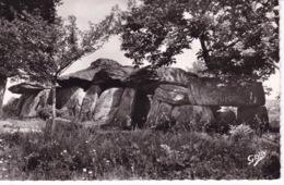 DOLMEN(LA ROCHE DES FEES) MARCILLE ROBERT - Dolmen & Menhirs