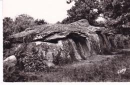 DOLMEN(LA ROCHE DES FEES) JANZE - Dolmen & Menhirs