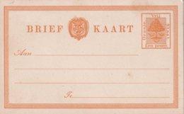ETAT LIBRE D'ORANGE       ENTIER POSTAL/GANZSACHE/POSTAL STATIONERY  CARTE - África Del Sur (...-1961)