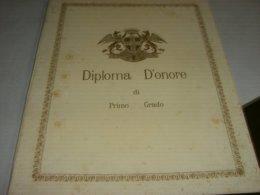 DIPLOMA D'ONORE DI PRIMO GRADO PER L'ANNO SCOLASTICO 1895-96 - Diploma & School Reports