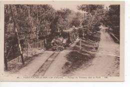CP ( St Palais Sur Mer - Passage Du Tramway Dans La Foret ) - Saint-Palais-sur-Mer