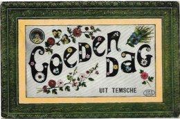 Temsche - Goeden Dag Uit Temsche. - Temse