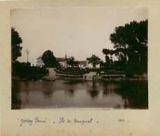 031019F - PHOTO 1900 - 78 BOUGIVAL Ile De La Loge Jersey Farm - Bougival