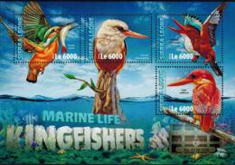 MDB-BK10-208 MINT ¤ SIERRA LEONE 2016 4w In Serie ¤ KINGFISHERS - BIRDS OF THE WORLD - OISEAUX - VOGELS - VÖGEL - Other