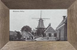 Delfzijl * Molenberg, Windmühle, Stadtteil * Niederlande * AK1085 - Delfzijl