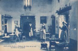 BOUAYE: Château Du Bois De La Noë - Le Thé à La Laiterie - Bouaye