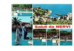 Cpsm - Saluti Da NERVI - Italie - Multivues - Dauphin Spectacle Animation - Delfini