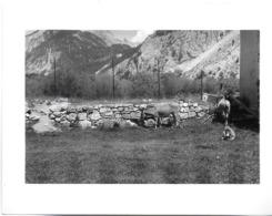 PHOTO PHOTOGRAPHIE NEVACHE PLAN-PINET 05 HAUTES-ALPES LOT 4 PHOTOS DONT UN CADRAN SOLAIRE ANE LES ALPES - Lieux