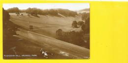 ARUNDEL Park Pughdean Hill Sussex - Arundel