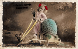 EASTER , PHOTO POSTCARD , RABBIT CARRIAGE - Ostern