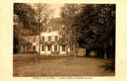 N°75901 -cpa Chateau De Joli Bois -Saint Jean Le Blanc (45) - Châteaux