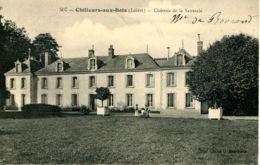 N°75908 -cpa Château De La Saussaye -Chilleurs Aux Bois- - Kastelen
