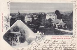 Mörschwil (St. Gallen) * Kuranstalt Auf Der Waid (Untere Waid), Promenade, Mehrbild, Stadtteil * Schweiz * AK1105 - SG St-Gall