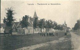 CPA KAPRIJKE Paardenmarkt En Gemeenthuis Estaminet Cauwels Bilard - Kaprijke