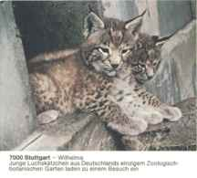 7219  Lynx: Entier (c.p.) D'Allemagne, 1985 - Lynx Stationery Postcard From Germany, Wilhelma Zoo Stuttgart - Raubkatzen