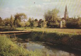 CHANTONNAY. - La Rivière De La Mosée Et Le Clocher - Chantonnay