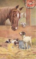 SUPERBE CHEVAL AU MILIEU DES CHIENS - Paarden