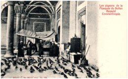 CONSTANTINOPLE - Les Pigeons De La Mosquée Du Sultan Bayazid - Turquie
