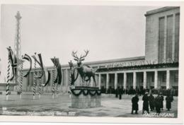 BERLIN - 1937 , Internationale Jagdausstellung - Allemagne