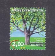 Bosnia And Herzegovina Croatian (Mostar) 2007 Day Of Trees Sorbus Domestica MNH - Bomen