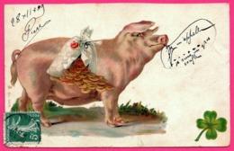 Fantaisie - Pig - Cochon Panse Remplie De Pièces D'or - 1909 - Cerdos