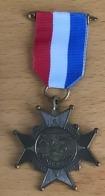 NL.- Medaille Van De ZWEMMERDAAGSE. - Organizations