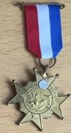 NL.- Medaille Van De ZWEMMERDAAGSE Met 5. - Organizations