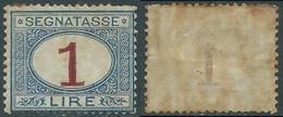 1890-94 REGNO SEGNATASSE 1 LIRA MH * - RB8-2 - 1878-00 Humbert I.