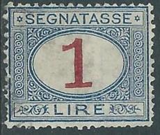 1890-94 REGNO SEGNATASSE USATO 1 LIRA - RB8 - 1878-00 Humbert I.
