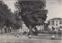 CARPI-MODENA-VIALE DELLA STAZIONE-CARTOLINA VERA FOTOGRAFIA-VIAGGIATA IL 9-4-1958 - Modena