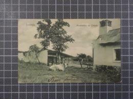 11.678) Angola Africa Portuguesa Luanda Arrabaldes Da Cidade Ed. Ferreira Ribeiro & Osório /canto Quebrado - Angola