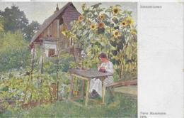 AK 0325  Massmann , Hans - Sonnenblumen / Künstlerkarte Um 1910-20 - Blumen