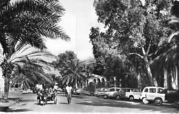 AFRIQUE NOIRE - DJIBOUTI : Le Centre ( Attelage à âne - Automobiles ) CPSM Dentelée Noir Blanc Format CPA - Black Africa - Djibouti