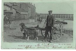 08 NOUZON ATTELAGE ARDENNAIS VOITURE A CHIENS 1902 CPA 2 SCANS - Frankreich
